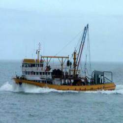 Margo Balıkçılık