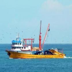 Saral Balıkçılık