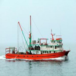 Yılmaz Balıkçılık